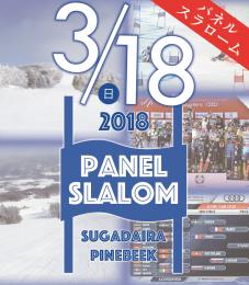 panelsl-banner (1)